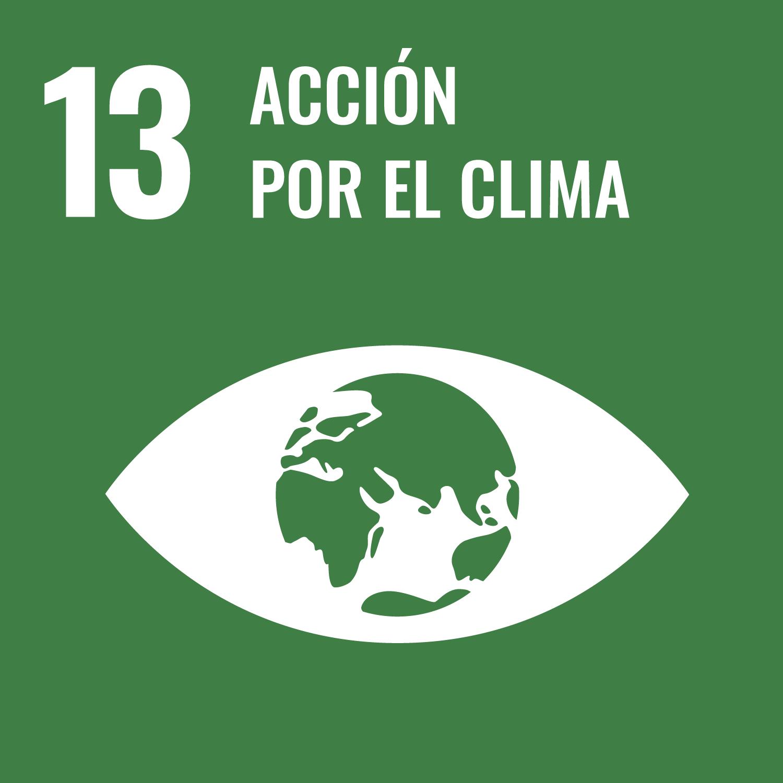 13. acción por el clima
