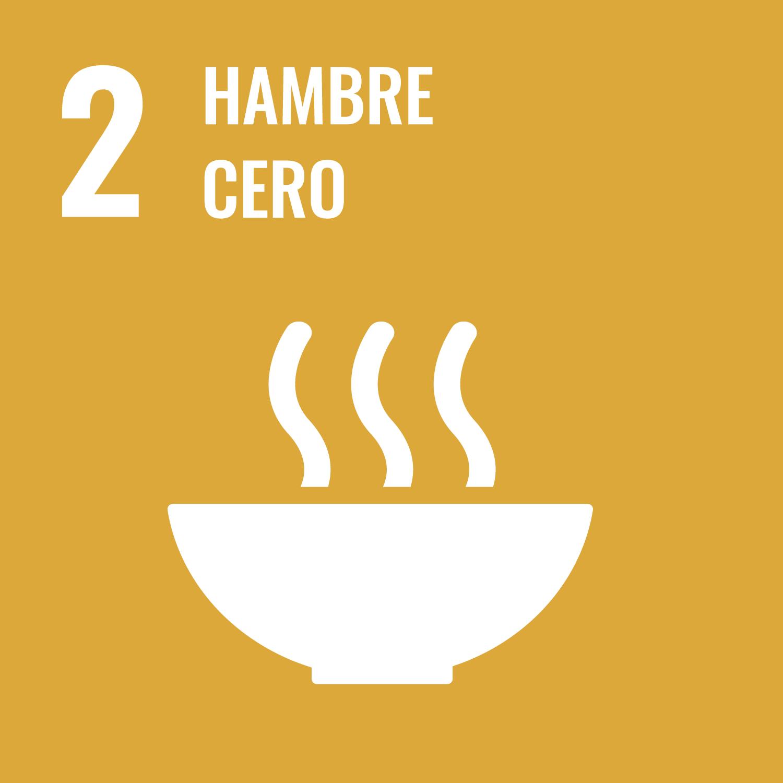 02. hambre cero